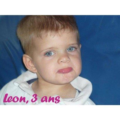 leon 3A