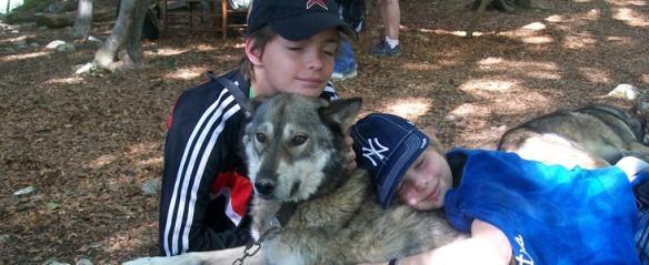 colonies-de-vacances-entre-chiens-et-loups-490-4
