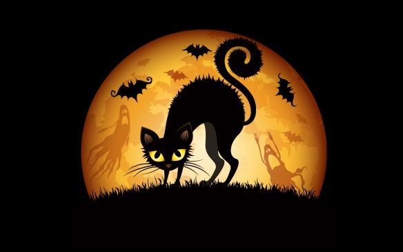 halloween_cats_bats-wide-1
